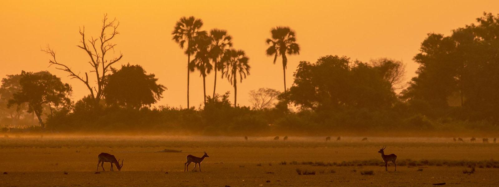 Africa Travel Destinations