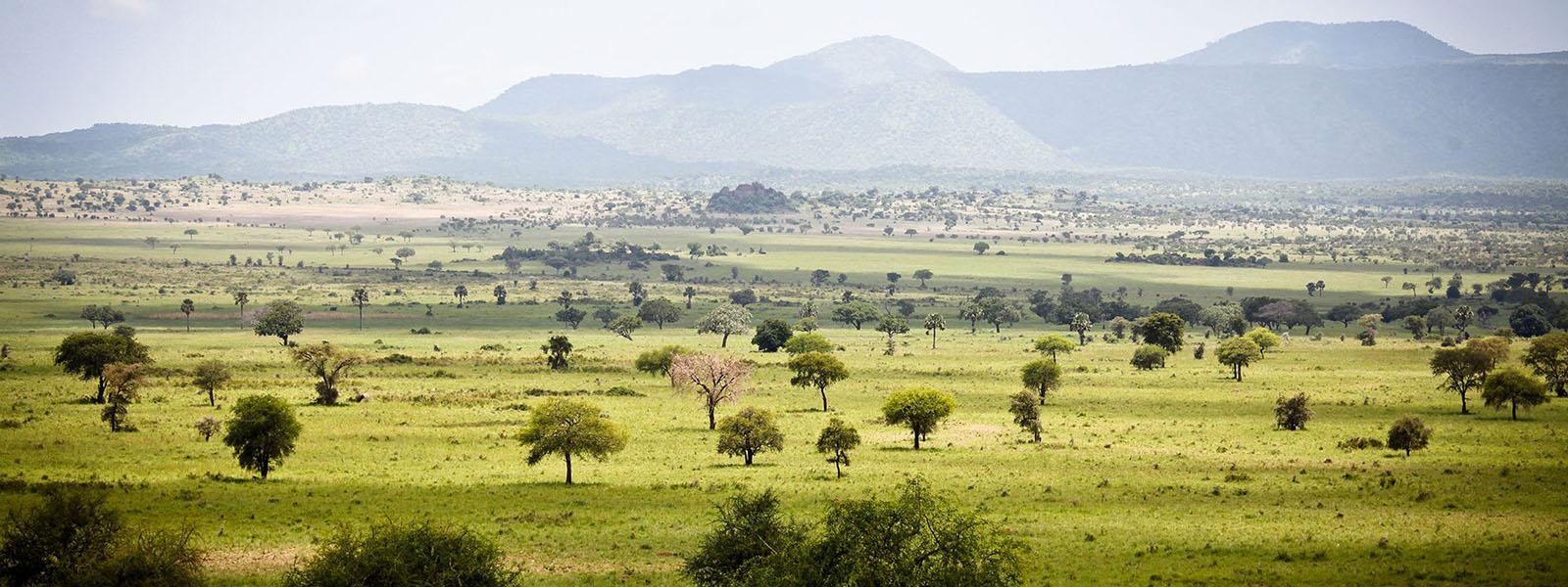 Uganda Travel Destinations