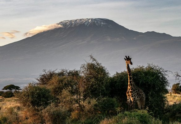 18 Days East Africa Adventure Holiday